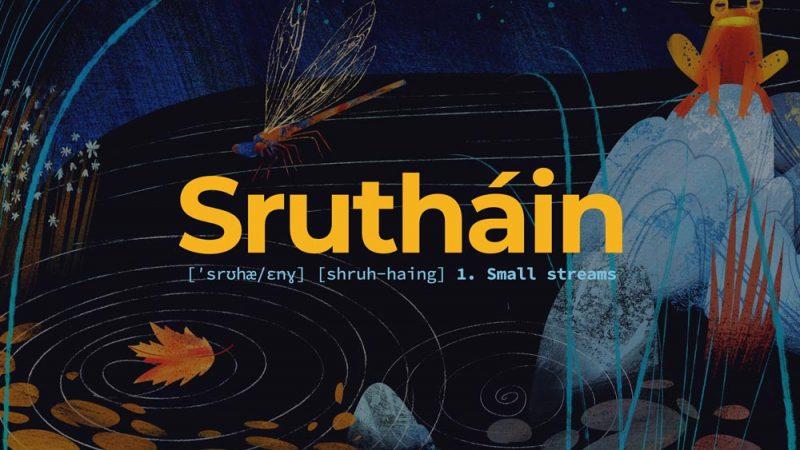 EAF-Sruthain-blog-pic-01
