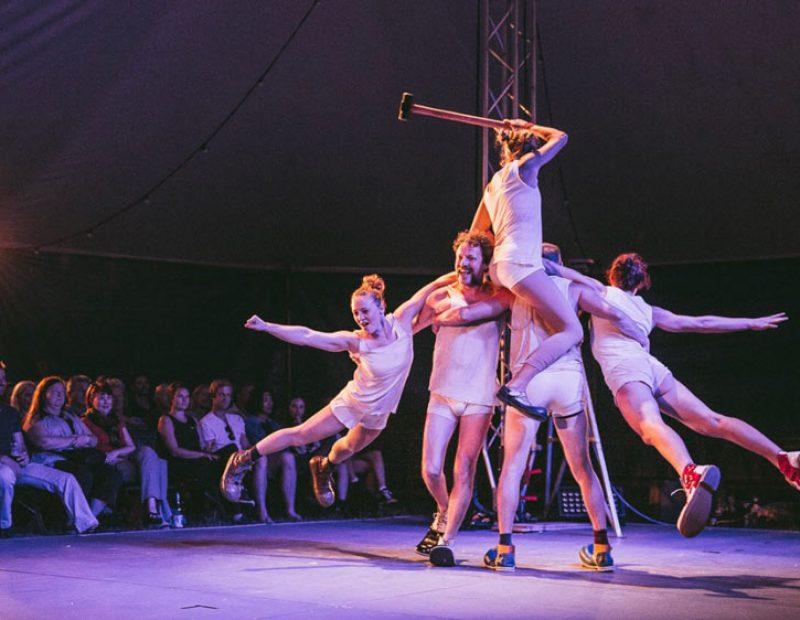 Tumble-Circus